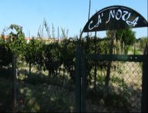 Azienda Agricola Ca Nova di Fogli Marino
