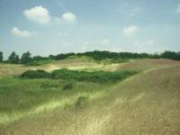 La Riserva Naturale Dune fossili di Massenzatica